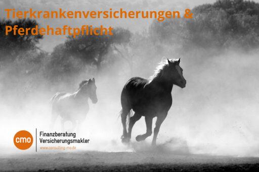 pferdehalterhaftpflicht-pferd-versicherungen-versicherungsmakler-karlsruhe-reitstall-reitturnier