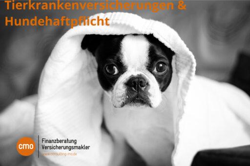 tierkranken-hunde-versicherungsmakler-karlsruhe-hundehalterhaftpflicht