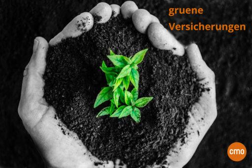gruene-versicherungen-nachhaltigkeit-versicherungsmakler-cmo